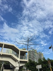 Outside Richland Gardens, Kowloon Bay (suryx) Tags: partycloudy sunny clear sky bluesky richlandgardens kowloon kowloonbay