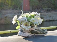 Trainer Flowers 2 (Thomas Kelly 48) Tags: leedsliverpoolcanal canal burscough gathurst panasonic lumix fz150 trainer trainerflowers