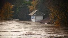 Torino (19) (cattazen.com) Tags: alluvione torino po esondazione parcodelvalentino murazzi pienadelpo cittàditorino turin piemonte imbarchino