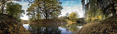 Herbsttag am Adolf - Mittag - See (diwan) Tags: germany deutschland sachsenanhalt saxonyanhalt magdeburg city stadt place rotehorn adolfmittagsee marieninsel bridge park sonne sun herbst autumn laub outdoor farben colors lightroom roundabout panoramix panorama stitch ptgui fotogruppe fotogruppemagdeburg canoneos650d canon eos 2016 geotagged geo:lon=11644663 geo:lat=52117120