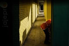 tunnel of love (Zlatko Vickovic) Tags: street streetphotography color novisad srbija serbia vojvodina zlatko vickovic lightandshadow shadow urban city streetcolor people zlatkovickovicphotography