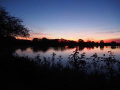 last light (mark.griffin52) Tags: olympusem5 england hertfordshire tringfordreservoir silhouettes lake water reflections landscape sunset