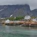 Norway - Lofoten - Sakrisøy
