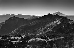 Peaks of the South Washington Cascades (Mount Rainier National Park) (thor_mark ) Tags: blackwhite blueskies capturenx2edited cascaderange colorefexpro day4 evergreentrees evergreens goatrocks hikingupthesideofmountrainier hillside hillsideoftrees lookingsse manateemountain mountadams mountadamsarea mountrainierarea mountrainiernationalpark mountains mountainsindistance mountainsoffindistance nature nikond800e pacificranges panoramicpoint portfolio project365 skylinetrail snowcapped southwashingtoncascades stratovolcano tatooshrange trailsaroundparadiseinn trees triptomountrainierandcolumbiarivergorge unicornpeak wa unitedstates