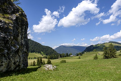 Alto Adige (Italy) - Alpe di Siusi (Massimo Battesini) Tags: nationalgeographic worldtrekker fujifilmxt1 fuji xt1 fujixt1 fujifilm finepix fujinon fujinonxf18135 fuji18135 fujifilmfujinonxf18135mmf3556rlmoiswr montagna montagne dolomiti mountains montaas berg dolomite dolomitas dolomites alpi alpes alps alpen landscape castelrotto trentinoaltoadige italia it italy italie italien europa europe siusi seiseralpe alpedisiusi seiseralm