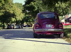(toulouse goose) Tags: film fujicolor 160 ns 120 mamiya 645 e 80mm 28 c41 homedeveloped mediumformat epson v500 volkswagen type1 beetle 1973 kitchener