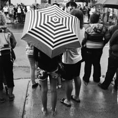 Ottawa Pride 2016 - Rain and More Rain (Man-Wei (ON/OFF)) Tags: rollei rolleiflex automat zeiss tessar
