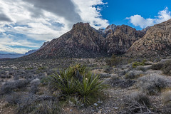 048-RRC160201_46953 (LDELD) Tags: nevada desert rugged dry harsh wild lasvegas redrocknationalconservationarea mountains cliff snow