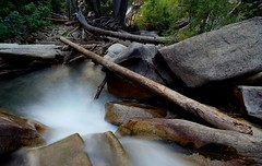 balancing risk vs reward... (Alvin Harp) Tags: littlecottonwoodcreek littlecottonwoodcanyon utah stream mountainstream creek nature mountainforest longexposure le bolders august 2016 alvinharp
