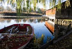 Seehausen am Staffelsee (murnau_am_staffelsee) Tags: boot murnau staffelsee dasblaueland landkreisgarmischpartenkirchen oberbayern bayern bootshaus