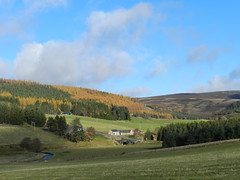 Allargue from Corgarff, Strathdon, Nov 2016 (allanmaciver) Tags: allargue strathdon scoland estate countryside farmland trees glen fields allanmaciver river don
