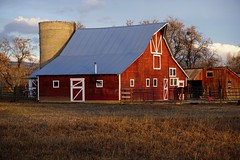 A waking farm (Let Ideas Compete) Tags: barn farm rural bucolic rustic redbarn silo horse fence
