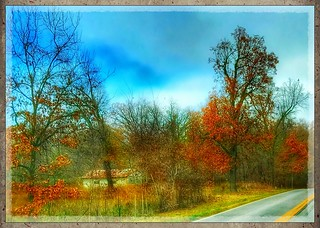 Roadside...(Explored 12-1-16)
