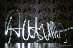 Wk47/52 - Light Graffiti  (Explored) (sopwell287) Tags: autumn fall reflection lightgraffiti light leaves nikon d60 graffiti wk4752 522016edition 522016