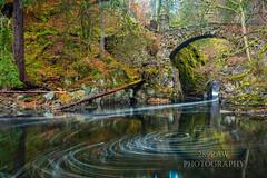 The Hermitage (289RAW) Tags: 289raw craigvinean forest hermitage dunkeld scotland bridge nationaltrustforscotland river braan landscape