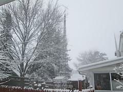 Tower In Winter (waynemegaman) Tags: kirklandil firstsnow winter december dekalbcountyil winterstorm snowing windmill