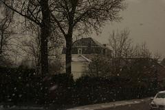 Tervuren.Belgium (Natali Antonovich) Tags: winter tervuren belgium belgie belgique nature christmas snow frost architecture street snowfall landscape