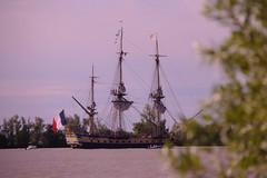 L'Hermione quitte le port de Bordeaux (Les photos de LN) Tags: voyage nature bateau garonne vasion voilier hermione dpart fleuve croisire gironde estuaire frgate portdelalune