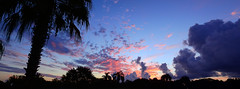 Wednesday Sunrise (Jim Mullhaupt) Tags: morning pink blue red wallpaper sky panorama orange sun color tree weather silhouette yellow clouds sunrise landscape dawn nikon flickr florida outdoor palm exotic p900 tropical coolpix bradenton sunup mullhaupt cloudsstormssunsetssunrises jimmullhaupt