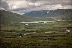 Sarek 2015 (Jonas Thomn) Tags: summer mi trekking sweden lappland august lapland sverige fell sommar sarek augusti trecking fjll pedersre fjllvandring