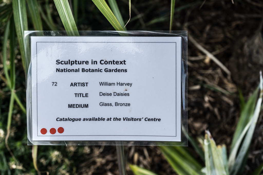 DEISE DAISIES BY WILLIAM HARVEY [SCULPTURE IN CONTEXT 2015] REF-107749