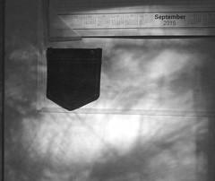 september shadows (muffett68 ☺☺) Tags: shadows pocket earlymorningsun