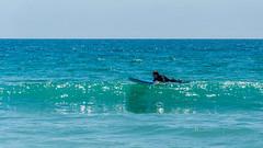 DSC_4176 (sergeysemendyaev) Tags: zoomabeach beach ocean malibu serfing losangeles la california summer пляж океан малибу серфинг ла лосанджелес калифорния nikon
