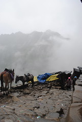 On way to Hemkund Sahib (Pradeep Thapliyal) Tags: india mountain outdoor sahib hemkund uttranchal uttrakhand hemkundsahib uttrakhandpilgrimage
