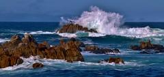 Rocks and Waves (Michael T. Morales) Tags: rocks waves pelican pacificgrove seashore ptpinos
