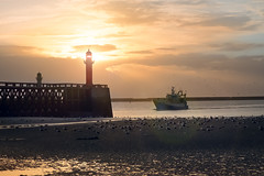 Rentrs au port (Bob03C) Tags: sunset mer lighthouse reflection backlight port soleil seagull flare fishingboat plage phare contrejour pasdecalais mouettes boulognesurmer chalutier