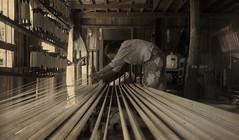 The loom (Saint-Exupery) Tags: nikon burma myanmar inlelake loom telar birmania lagoinle