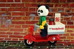 Food Panda Express! (Lesgo LEGO Foto!) Tags: cute guy love fun toy toys panda lego minifig collectible minifigs omg collectable minifigure minifigures legophotography legography collectibleminifigures pandaguy collectableminifigure coolminifig