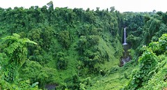 Samoa - Sopo'aga Falls
