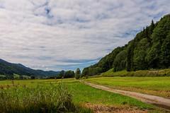 Grosser Alpsee 12 (Wolfgang Staudt) Tags: grosseralpsee allgaeu bayern immenstadt gebirge berge see bergsee ausflugsziel deutschland