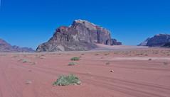 Wadi Rum  /   # 13 (schreibtnix) Tags: reisen travelling naherosten neareast  jordanien jordan  landschaft landscape wste desert wadirum felsen rocks himmel sky blau blue olympuse5 schreibtnix