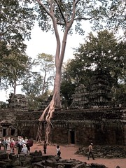 Angkor (jcbkk1956) Tags: city trees abandoned ancient nikon ruins cambodia khmer angkorwat tourists siemreap angkor viagginelmondo worldtrekker