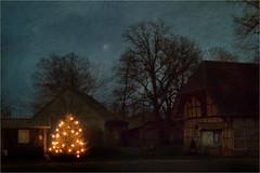 Christmas - Ick wnsch ok frhliche Wihnacht, Gesundheit un Frden,  vl Glck un een langes Lben un dornah de ewige Sligkiet! (f.a.photography) Tags: christmas texture natal weihnachten mond nikon nacht sigma sauerkraut an  bergen jul nol weihnachtsbaum natale bratwurst   nadal bauernhof celle milad  d5 heide d500 jl merrill foveon nollaig lneburgerheide boi joulu lebkuchen pasko gabonak lneburg  niedersachsen  dp2  julud kersfees natalis  kristnasko   krishtlindje huxahl     hnub  nwl   dp2merrill    sx420   kirsimati khixamis krisimaasi  tz101 sx540 sj5000x
