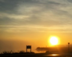 Golden Orb (DASEye) Tags: sun silhouette fog sunrise gold dawn golden foggy silhouettes orb iphone davidadamson daseye