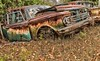 McLean's XXXXI (martinaschneider) Tags: old fallleaves ontario fall abandoned car rust rockwood wreckers mcleans