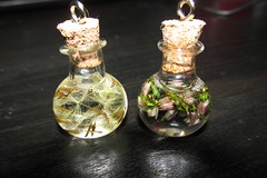 mini bottles - soon - (pink pineapple8D) Tags: flower glass bottle jewellery accessories accessory necklance