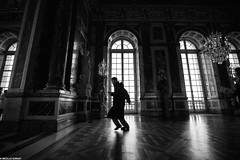 Le roi est mort (Nicko91220) Tags: france silhouette nb versailles chateau chateaudeversailles