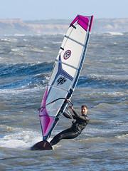 PC310366-Edit (Brian Wadie Photographer) Tags: gulls oystercatcher windsurfing kiting em1 goodlight 14xtc avonbeach canon70300lis hemgistburyhead