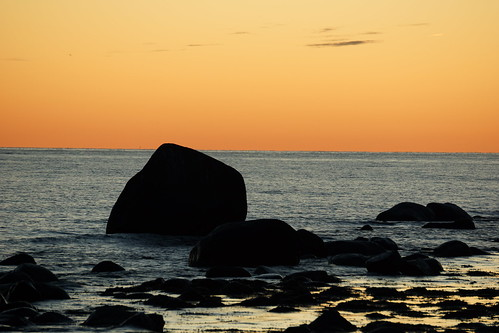 Rocks in the sea at dawn