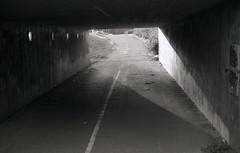On point (Magnus Bergstrm) Tags: canonae1 canon ae1 analog bw blackwhite blackandwhite kodak kodaktmax100 kodaktmax tmy 100tmx sweden sverige karlstad vrmland road tunnel light sun shadow