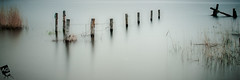 T h e L a s t P o s t (AnthonyGinmanPhotography) Tags: minimal lake posts panorama