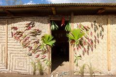 PNG 11 (travelationship) Tags: travel travelationship travelphotography png papuanewguinea gorokashow goroka