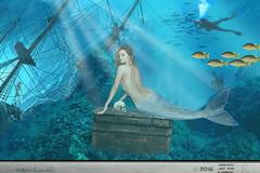 SOGNO DI UN SUB (ADRIANO ART FOR PASSION) Tags: fotomontaggio photomontage photoshop sirena mermaid sub subacqueo visione sogno dream sottacqua underthesea photoshopcreativo