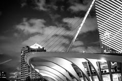 Dreams About Architecture (Thomas Hawk) Tags: america milwaukee milwaukeeartmuseum santiagocalatrava usa unitedstates unitedstatesofamerica wisconsin architecture bw fav10 fav25