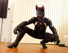 11_19_16_01_00036 (Kory / Leo Nardo) Tags: pup pupplay pupleo kory rubberdawg zentai lycra spandex suit collar dog doberman dobi tail dawg furry boots flats corset purple lace fem effeminate trans gay indoor moto motorcycle kawi kawasaki zx10r dianasie tracksuit helmet leash leather gear tattoo