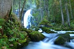 """ Waterfall "" (Kalbonsai) Tags: outdoorphotography nikon d500 1685mm langzeit waterval waterfall water stones stenen salzburg austria mountain bergen naturphotography color"